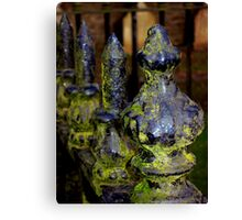 Mossy Spikes Canvas Print