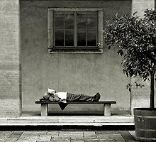 Lazy Sunday by Nikkhil