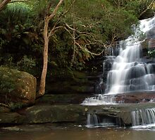 Somersby falls flowing by Andrew Murrell