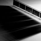 Black & White by Kory Trapane