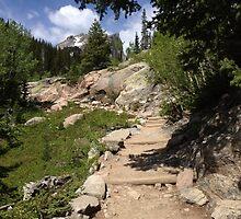 A Trail to Remember by hgamble12
