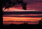 """Crimson Dawn"" by debsphotos"