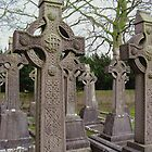 High Crosses by Orla Cahill
