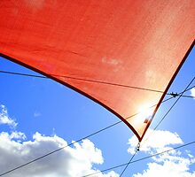 Wind in the Sail by JustM