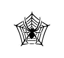 Spider cobweb Photographic Print