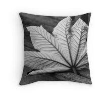 Fallen Leaf - Fairchild Tropical Gardens, Miami, Florida Throw Pillow