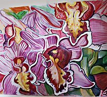 orchid cluster by jemmanyagah