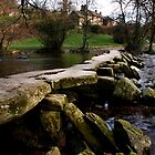 Tarr Steps by Paul Woloschuk