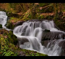 Badger Waterfalls by Steve Green