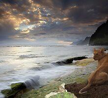 1137-Coastal Benin Sunrise by George W Banks