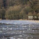Icy Jetty by Susan Dailey