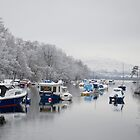 River Leven in Winter by Susan Dailey