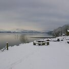 Jetty in the Snow  by Susan Dailey