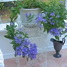 Lacey Blue Campanula by Pat Yager