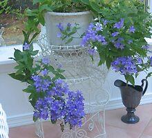 Lacey Blue Campanula by Pat Yager