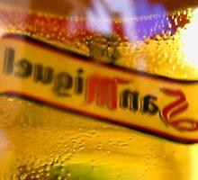 Through a Glass, Vaguely! by Wulfrunnut
