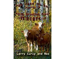 Larry,Curly and Mooo Speak Out Photographic Print