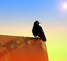 Mystical Raven by Ryan Houston