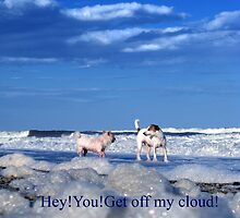 hey you get off my cloud by catealist
