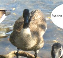 Canada Geese - Funny Sticker
