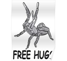 Free hugs spider Poster
