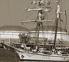 Tall Ships by Megan Martin