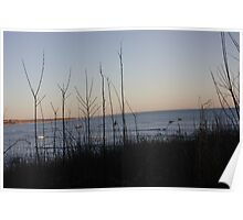 Squibnocket Beach From Afar Poster
