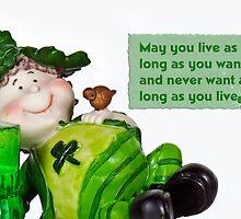 Irish Wish by Maria Dryfhout