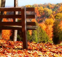 Edge of Fall by janetlee