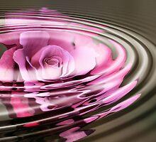 Rose Water by Donna Adamski