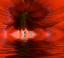 Red Liquid by Donna Adamski