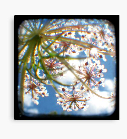Look Up Through The Viewfinder Canvas Print