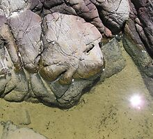 The goblins of the rock pool by Virginia McGowan