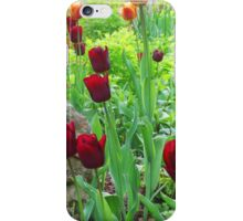 Brown And Yellow Tulips iPhone Case/Skin