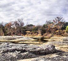 Lucy Creek by Carla Jensen