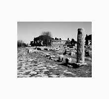 Paestum: archaeological site column and temple Unisex T-Shirt
