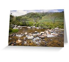 High Country Mountain Stream Greeting Card