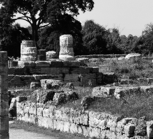 Paestum: archaeological site with trees and column Sticker