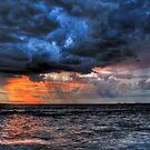 The Cruel Sea by Michael  Bermingham