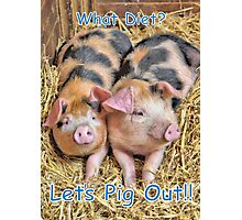 Let's Pig Out!! Photographic Print