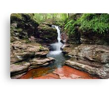 Amazing Hues Of Adams Falls Canvas Print