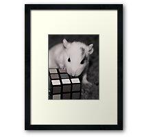 Smart Like a Square  Framed Print