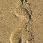 Leave a Footprint by Violette Grosse