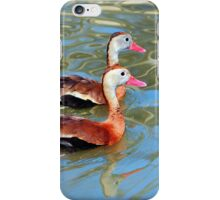 Red Billed Whistling Duck iPhone Case/Skin