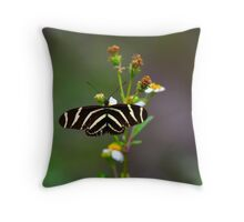 Wings Opened Throw Pillow