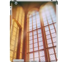 holy window iPad Case/Skin