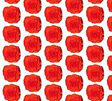 Red Begonia Flower by ShortStckStitch