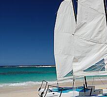 Wind In My Sails by Joanne  Bradley