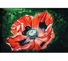 Poppies for Anzac Photographic Print
