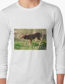 A working dog, Australia. Long Sleeve T-Shirt